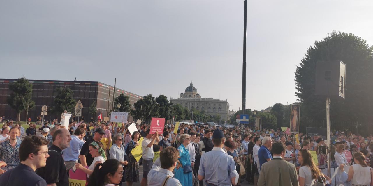 Marsch für das Leben gegen den Matic-Bericht